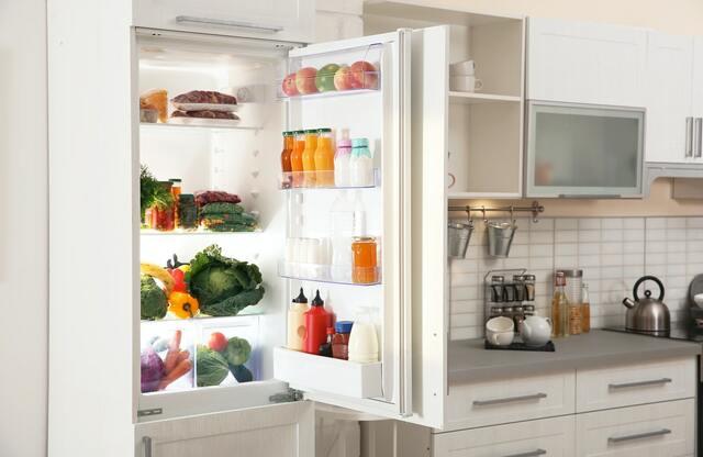 Máy nén được sử dụng bởi tủ lạnh truyền thống là loại chỉ hoạt động ở một tốc độ