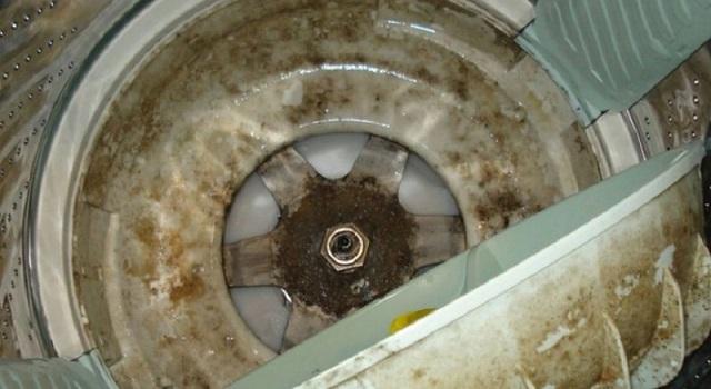 Một số dấu hiệu cho thấy máy giặt cần vệ sinh ngay lập tức